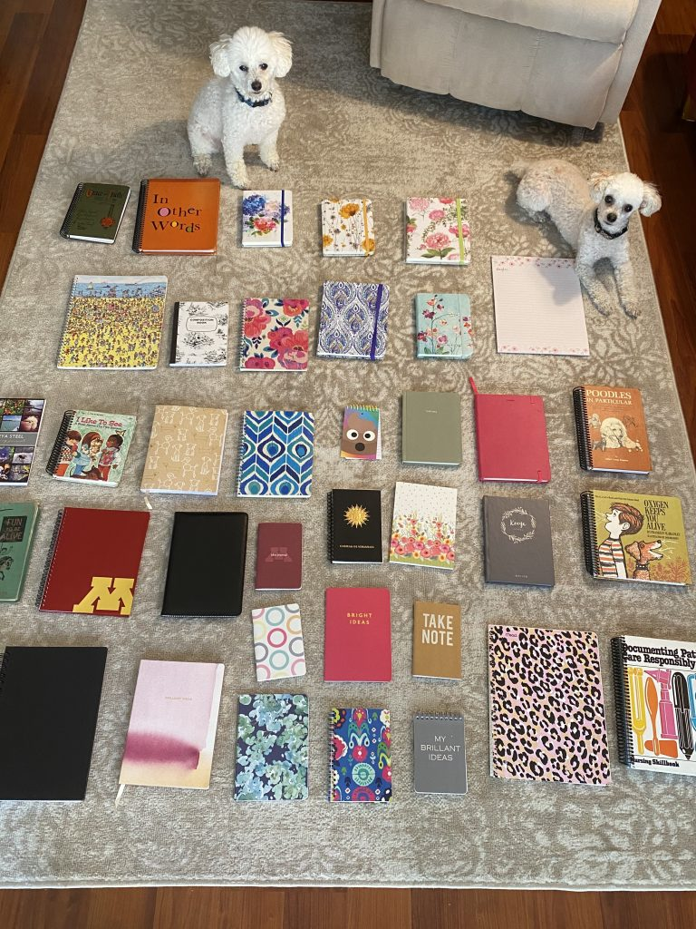 Picture of 37 notebooks of various size and two toy sized poodles