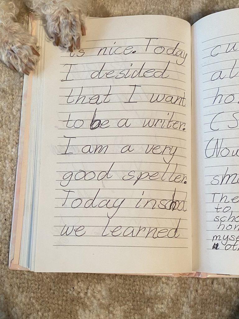 Picture of Keeya's 1994 journal